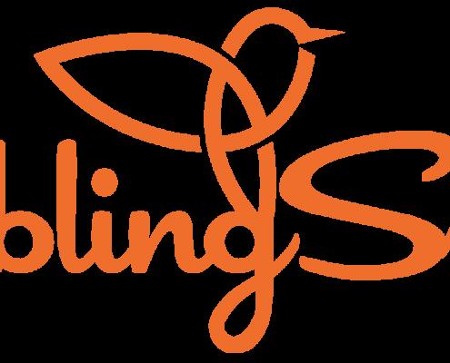 LieblingSstück Logo XL als PNG Datei